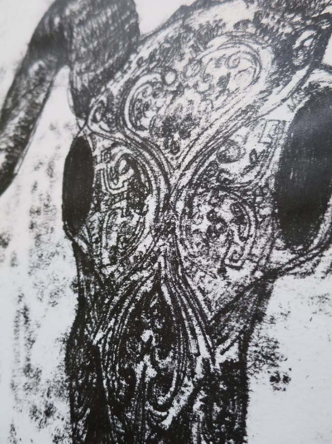 detailoboucnotype