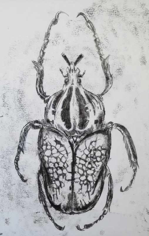 scarabonotype